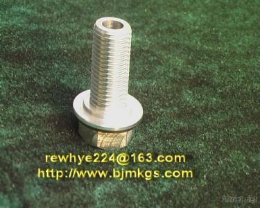 Machining Titanium Screw