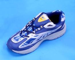 De Schoenen van sporten