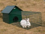 Funcionamento do coelho