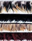 Marabouの羽