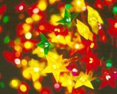 星の木ライト