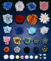 胸の花か固定花
