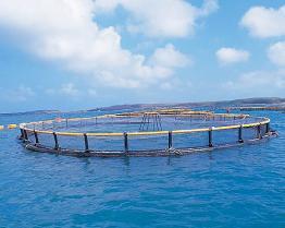 栽培漁業の網