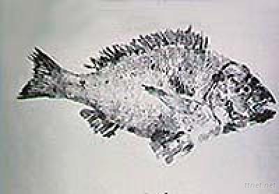 Gyotackle, Fish Printing Paper