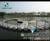 MF-Fish Farm-01