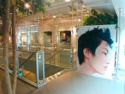 Display System