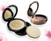 De Stichtingen van de make-up