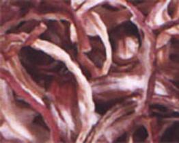 탈수된 양파