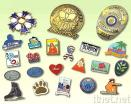 Pins & Badge