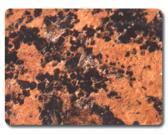 アルミニウム合成のパネル
