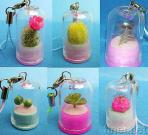 Pet Tree 1 (Mini Plant) as Mobile Phone Strap or Key Chain