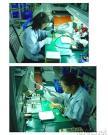 Behandlung der Reparatur-Tabelle