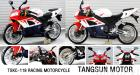 RACING MOTORCYCLES;ACROSSING