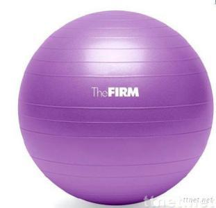 PVC gym ball 55cm with logo printable