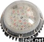 LED Dot Light