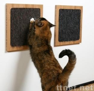 Cat Scratch/ cat care/ cat toys/cat toy