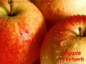 Apple extract (Apple Polyphenols & Phloretin & Phloridzin)