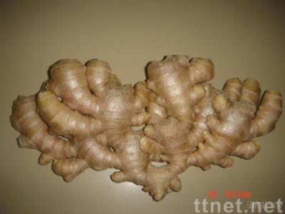 Air-Dried Ginger