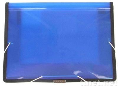 PP/PVC file boxes/cases (FE100)