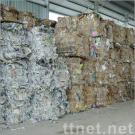 Paper Scrap (Office/OCC/Kraft/Shredded)