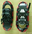 Zapatos de la nieve