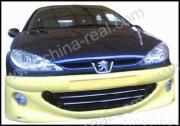 Peugeot/206 lichaamsuitrusting 2006-2008