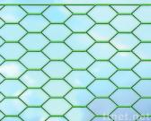 hexognal wire netting
