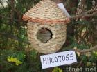 grass bird nest