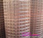 electro galvanized weled mesh
