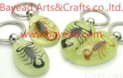 Real Insect Amber Keychain For Promotion Gift