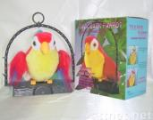 Talk Back Parrot