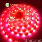 led ribbon,LED ribbon strip light,led strip ribbon,led flexible ribbon