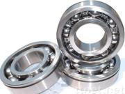 electric motor bearing