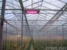 High Power LED Garden Light