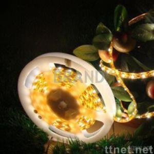LED Flexible Strip Lamp