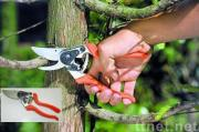 Pruner with Comfortable Ergonomic Design