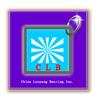 China Luoyang Bearing Inc.