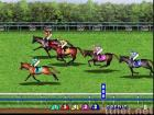 THER RACING KING casino horse racing game video slot gambling amusement game coin game