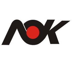 Ningbo Aok Karting Co., Ltd.