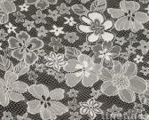 Pure Nylon Lace Fabric