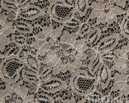 Embroidered Cotton Lace Fabric