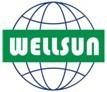 Shenzhen Wellsun Optoelectronics Tech Co.,Ltd.