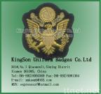 Eagle Badge,Hand embroidery badge,Wire badge