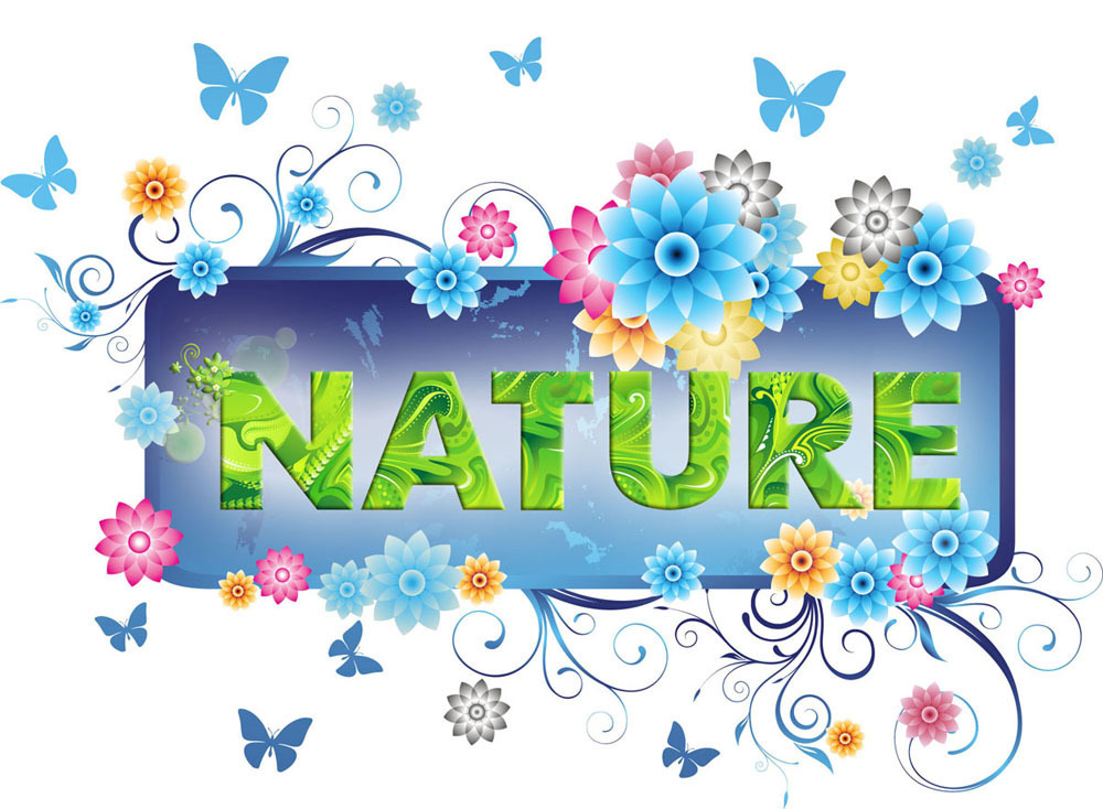 Foshan Nature Decoration Materials Co., Ltd.