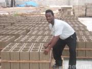 Solid Brick Plant