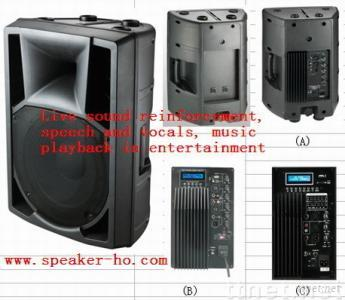 12 inch RCF performance speaker