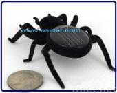 Solar Grasshopper Toys Animals