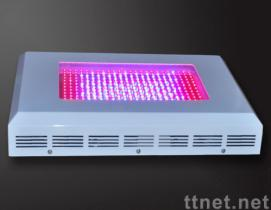 300W LED Plant Grow Light with 300 LEDs, 85 to 264V AC, Over 5,600lm, Made of Plastic Material