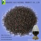 Purple Rice Extract