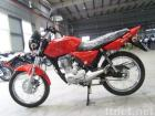 Pocket Bikes 150cc Motorcycles